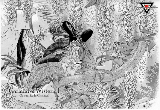 MaidenRose_Garland of Wisteria_ESP_Antlia262 (1)