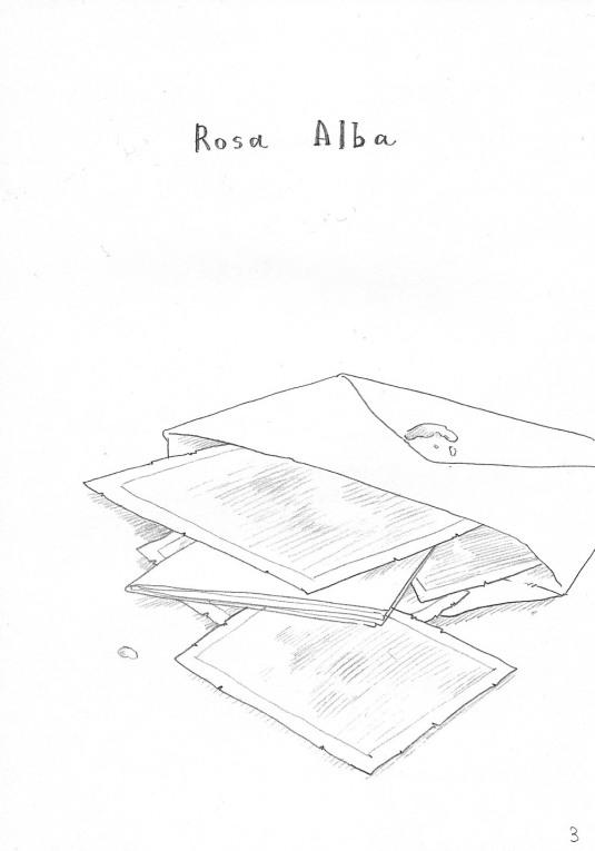 MaidenRose_RosaAlba CAP1_ESP_Antlia262_ (3)